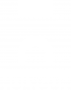 Holygon Branded Logotype White 3710px-NoAa